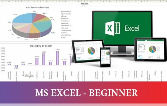 MS EXCEL - BEGINNER}